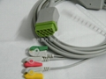 one-piece series cable with leads