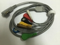 DMS Holter 7lead wire and 10lead wires 2