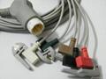 监护,心电导联,血氧饱和探头 4