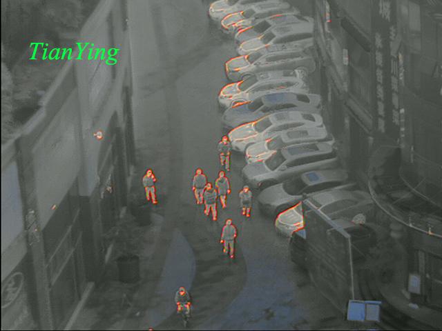 TL300 Fusion Thermal Imaging Night Vision Binoculars - snow mode