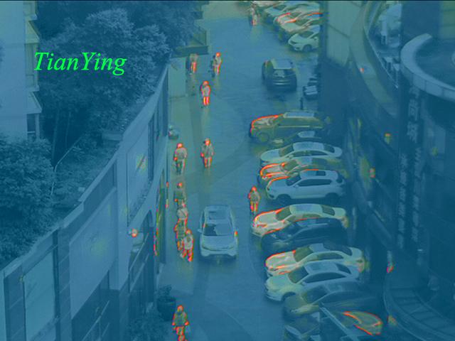 TL300 Fusion Night Vision Thermal Imaging Binoculars - ocean mode