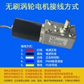 4058GW直流無刷渦輪蝸杆減速電機 2