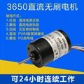 3650无刷高速电机 刹车电机