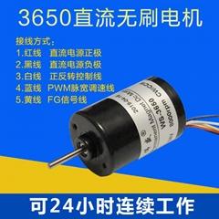 3650直流無刷高速電機3相4極內置驅動剎車電機