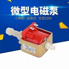 MP4744沙發清洗機微型水泵47DSB電磁泵