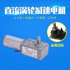 渦輪蝸杆減速電機 微型慢速減速馬達24v直流減速電機12V調速電機