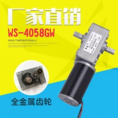 雙軸渦輪蝸杆減速電機12V24V直流低速馬達4058GW直流齒輪減速電機