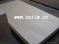 天財木業CARB膠合板