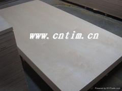 天财木业CARB胶合板