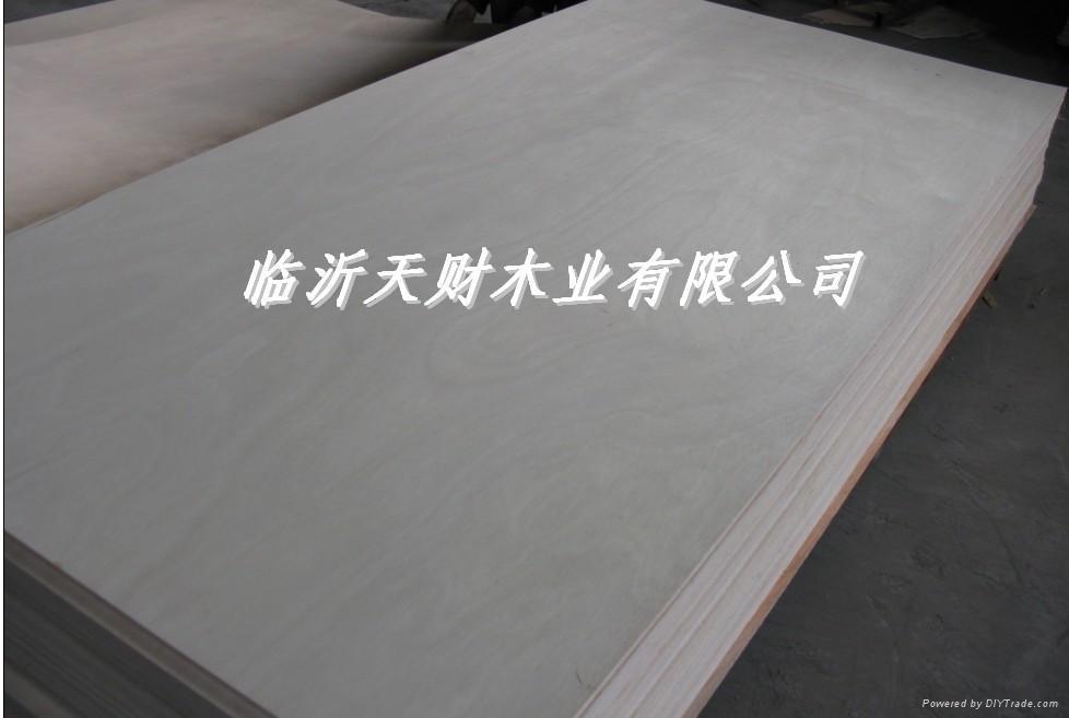 天財木業CARB防塵膠合板 1
