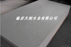 天财木业CARB防尘胶合板