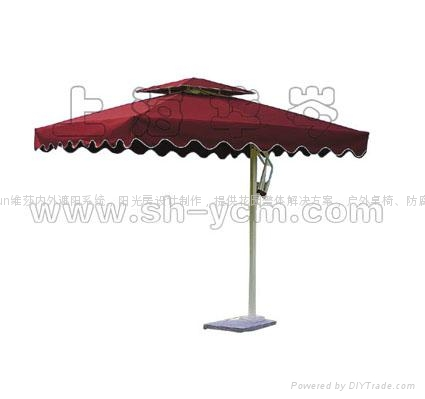 邊柱傘  2
