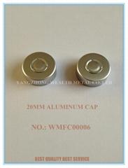 Aluminum Cap for Antibiotic Bottle