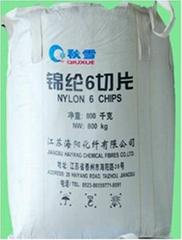 NYLON6 CHIP