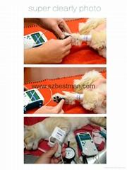 Handheld veterinary vascular doppler detect animal blood flow (Hot Product - 1*)