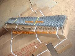 东南亚砖带网