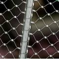 扣结不锈钢丝绳网 2