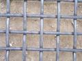 65Mn 钢丝网  2