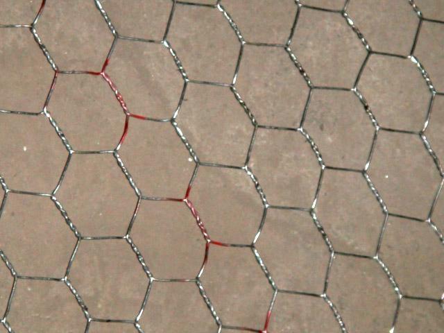 不鏽鋼六角網 2