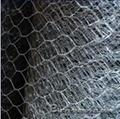不鏽鋼六角網 4