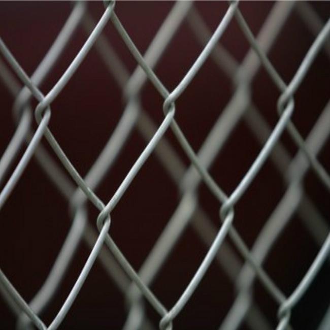 菱形网 2