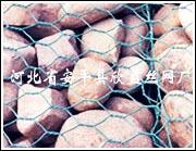攔石網 1