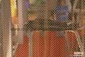 窗帘装饰网 2