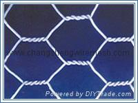 Galvanized Hexagonal Wire Mesh   1
