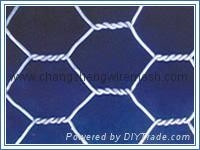 Galvanized Hexagonal Wir