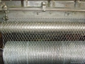 Galvanized Hexagonal Wire Mesh   2