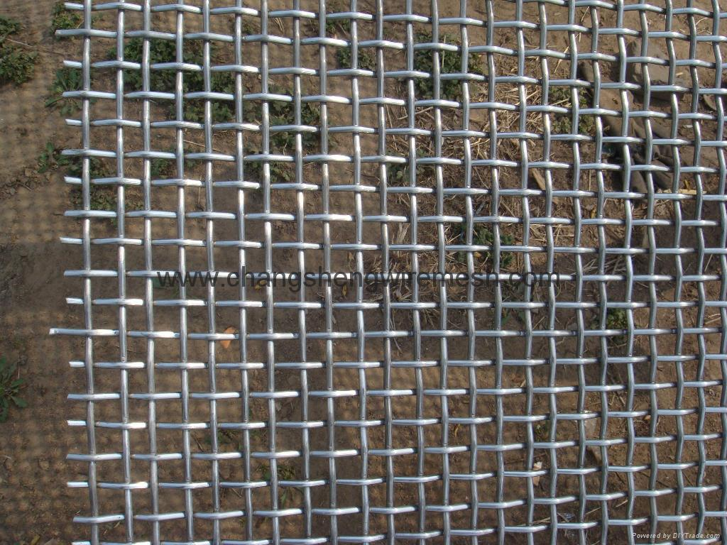 Double weaving crimped wire mesh gm fls china