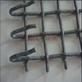 高碳钢丝网 3
