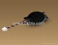 Panasonic CR2450 CR2477 CR2354 CR3032 3V 620mAh Lithium Button Cell   4