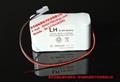ECG ECG - 101 - g - 300 - g electrocardiogram ECG - 100 cells