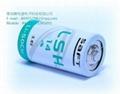 SAFT法国 LSH14 电池