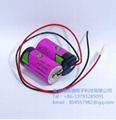 Tadiran TL-5930 Pack D Cell 3.6 V 19000mAh  Lithium Battery