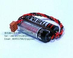 TOSHIBA 東芝 ER6V 2組合 鋰電池組 帶4線插頭