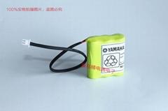 KR4-M4251-100 雅马哈 Yamaha ABS 充电电池