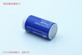 Sonnecell SL - 2770 - C Germany sunshine Sonnenschein lithium battery 3.6 V