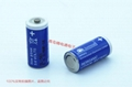 Sonnecell SL-561 2/3AA Germany sunshine lithium battery 3.6V Sonnenschein