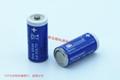 Sonnecell TL-5955 2/3AA 德国 阳光 锂电池 3.6V Sonnenschein 6