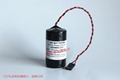LS33600-CN1  Cameron NUFLO Flowmeter valve battery
