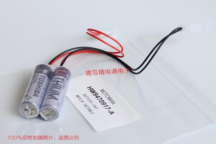 HW9470917-B YASKAMA  Motoman special battery 142198-2