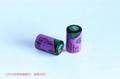 Tadiran TL-5902 (1/2AA 3.6V 1200mAh)  Lithium Battery