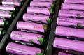 SL-760 AA 原厂塔迪兰TADIRAN 锂电池 按要求加插头或焊脚 SL760 8
