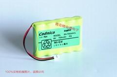 三洋 Sanyo Cadnica 5N-700AACL 三洋 6V 700mAh 充電電池組 現貨
