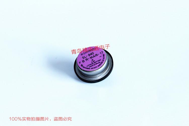 SL-840 SL-840P 塔迪兰 TADIRAN 锂电池   1