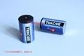 SB-D02 Tekcell ER34615 D 3.6V 19Ah 仪表PLC 锂电池 7