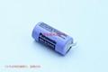 BR-2/3AG BR17335 松下Panasonic 锂氟化石墨 电池 可加插头/焊脚电池 可加插头/焊脚 15