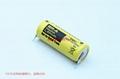 BR-A BR17455 松下Panasonic 锂氟化石墨 电池 可加插头/焊脚 15